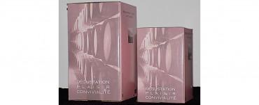 Bag-in-Box : les avantages du vin en cubis